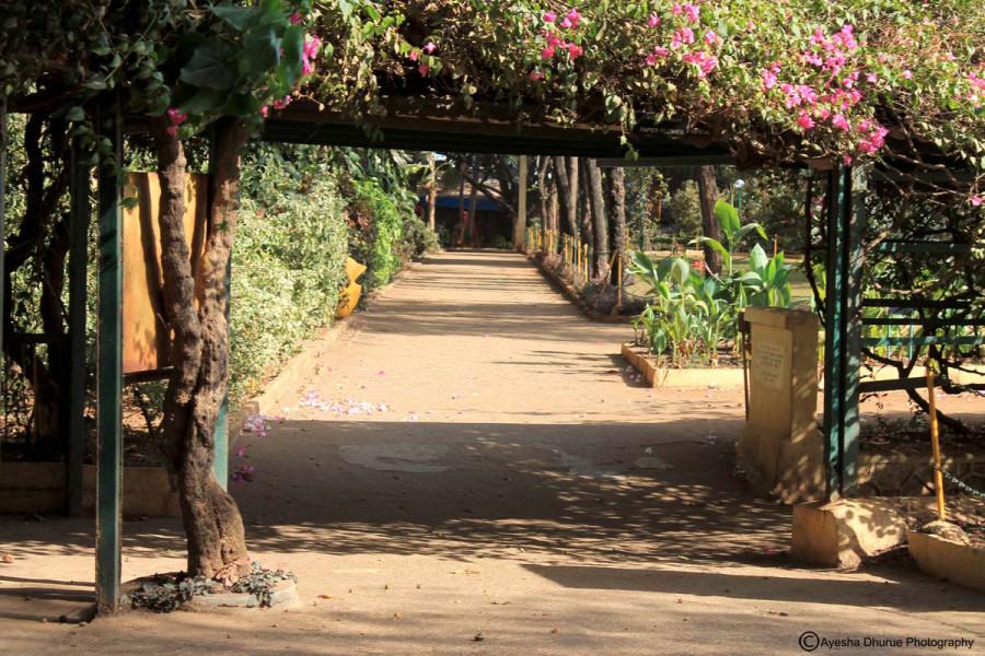 breach-candy-garden-ayesha-dhurue-photography-mumbai-3