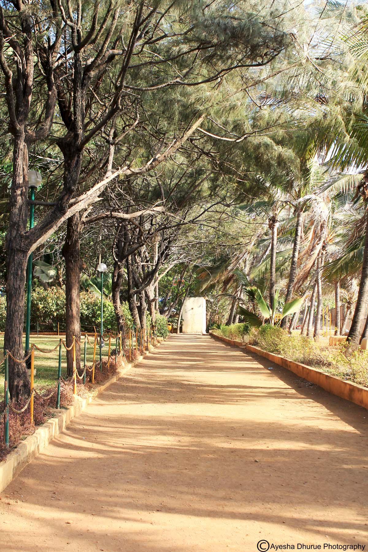 breach-candy-garden-ayesha-dhurue-photography-mumbai-5