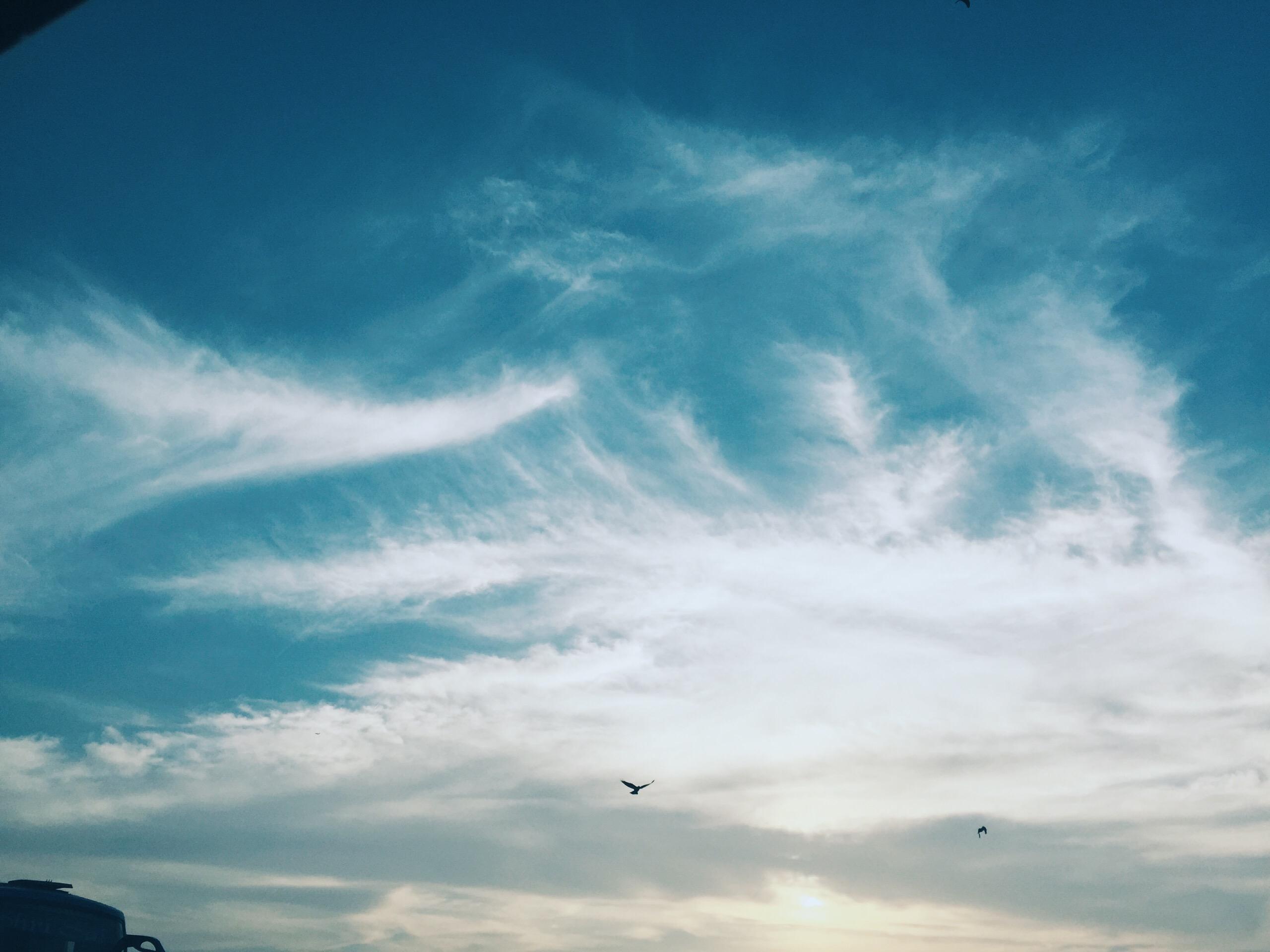 Sky Vibes