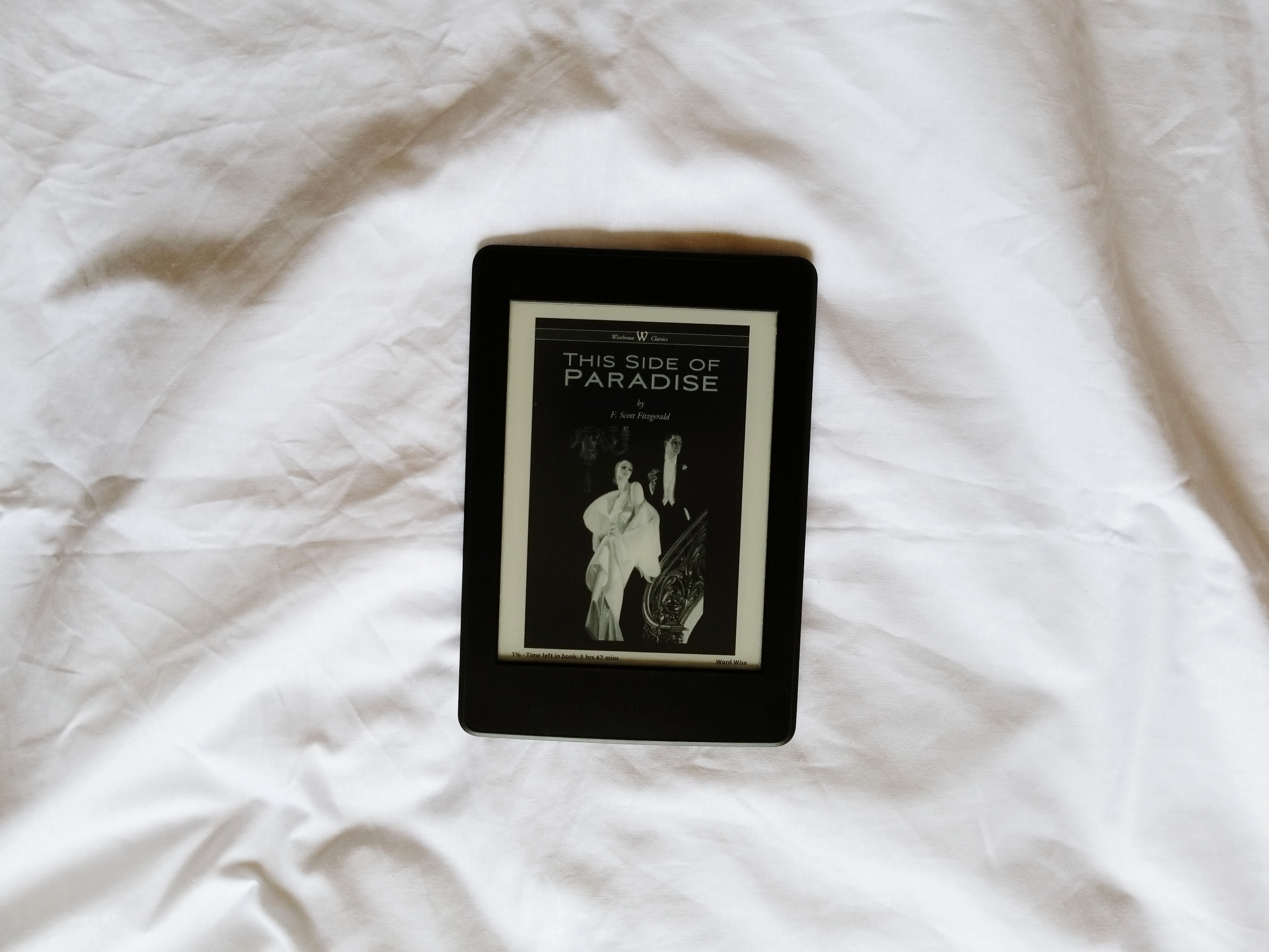 On the Seemingly Vain Things We Do: In F. Scott Fitzgerald's This Side of Paradise
