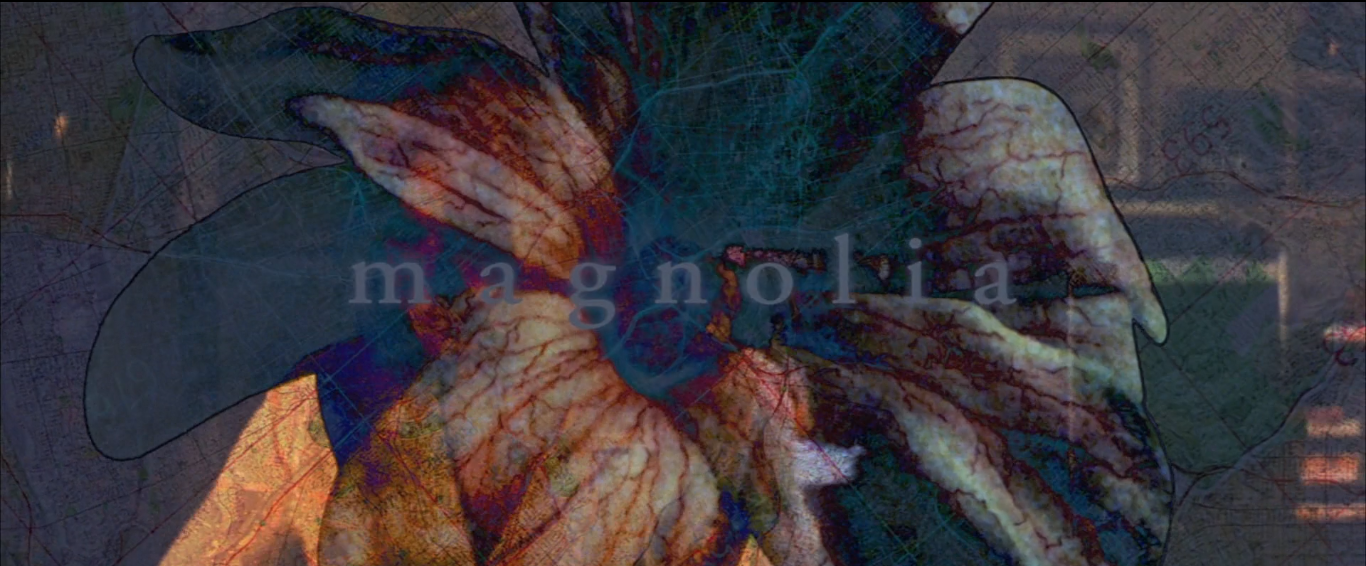 Paul Thomas Anderson's Magnolia